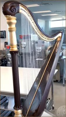 Chocolate harp