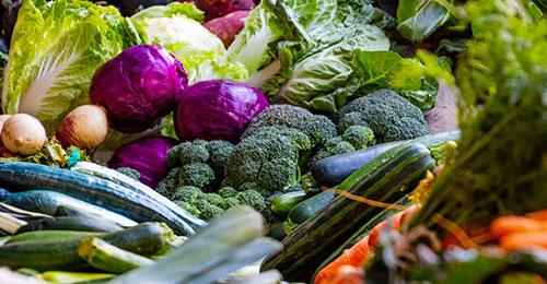 picture of random selection of vegetables