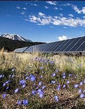 Photo: Existing Sunsense solar array.