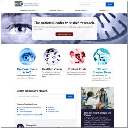 screenshot of the new NEI website