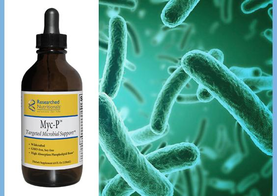 Myc-P Targeted Microbial Support