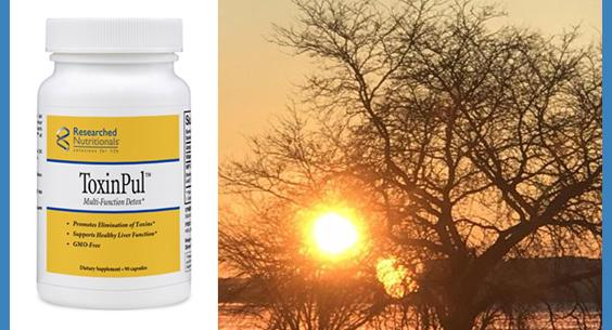 Researched Nutritionals ToxinPul - 90 capsules