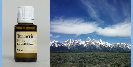 Turmeric Plus Essential Oil Blend