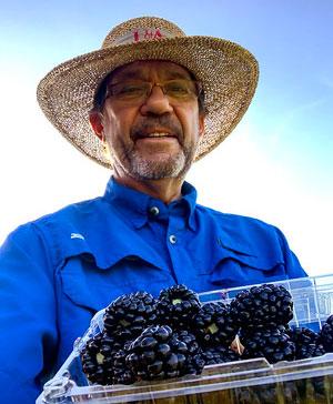 Dr. John Clark with Award Winning Blackberries