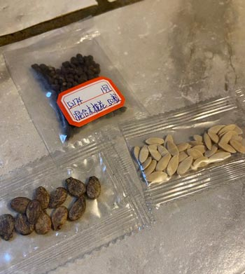 unsolicited seeds with Chinese characters on package sent to Washington County citizen
