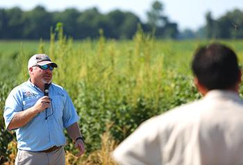 Tom Barber in front of pigweed