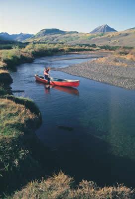 canoe-stream.jpg