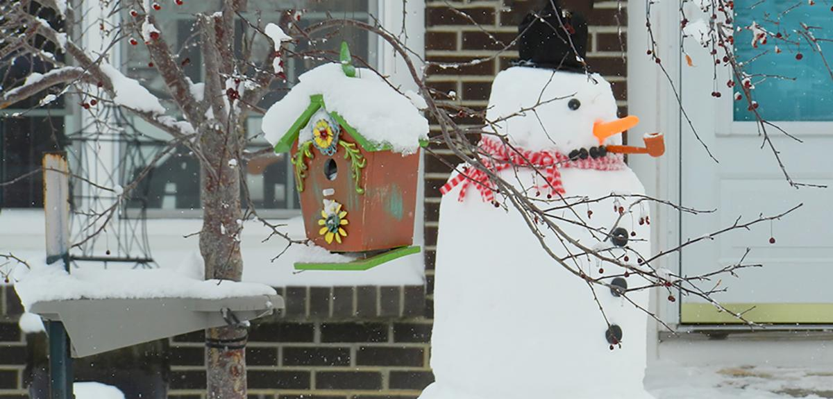 Snowman with a birdhouse in the snow