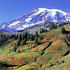 mountainside-sm.jpg