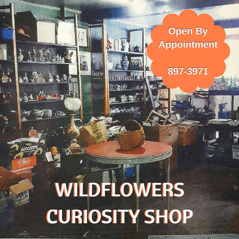 Wildflowers Curiosity Shop