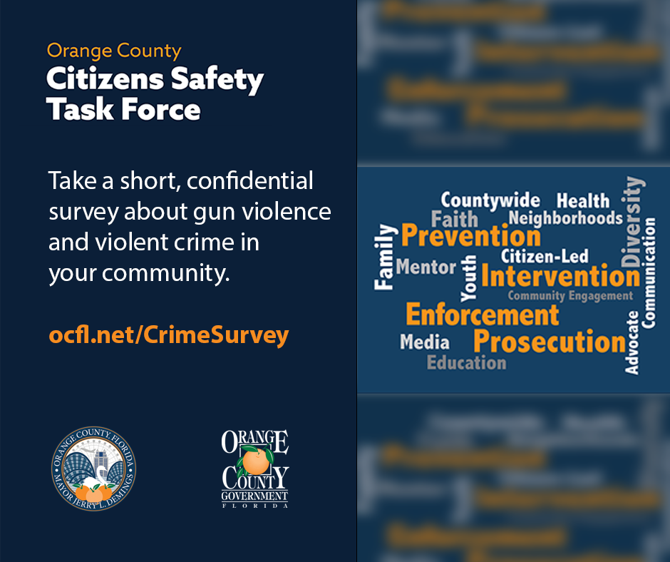 Citizens Safety Task Force asks you to take a short survey about gun violence in your community