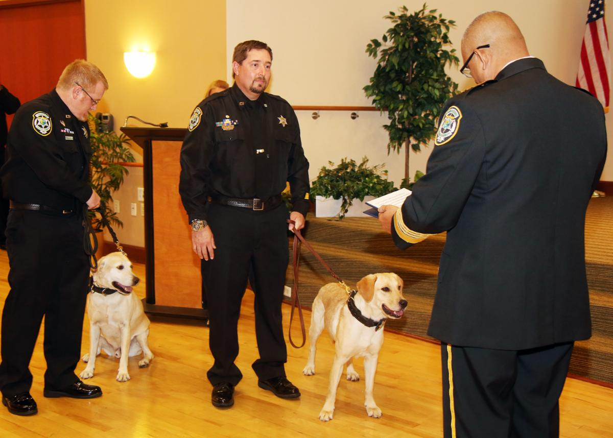 Two officers holding two K-9 dogs on a leash as they are sworn in
