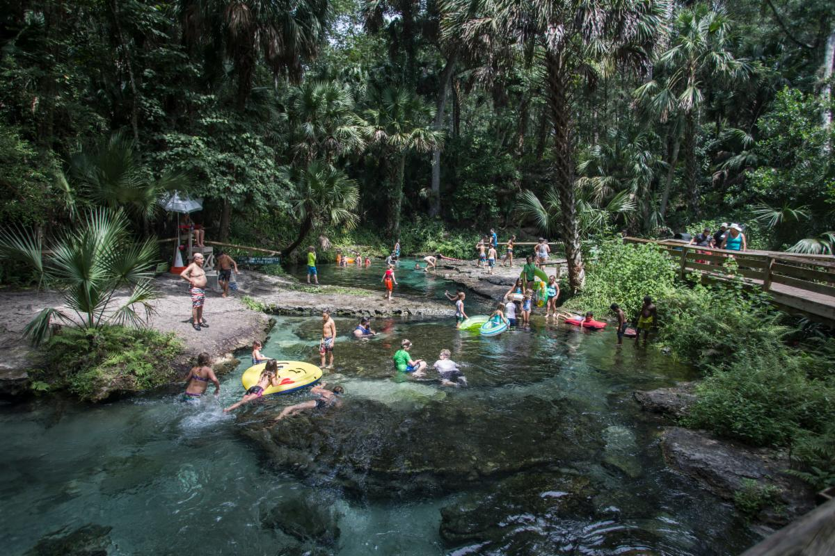 A creek with people swimming