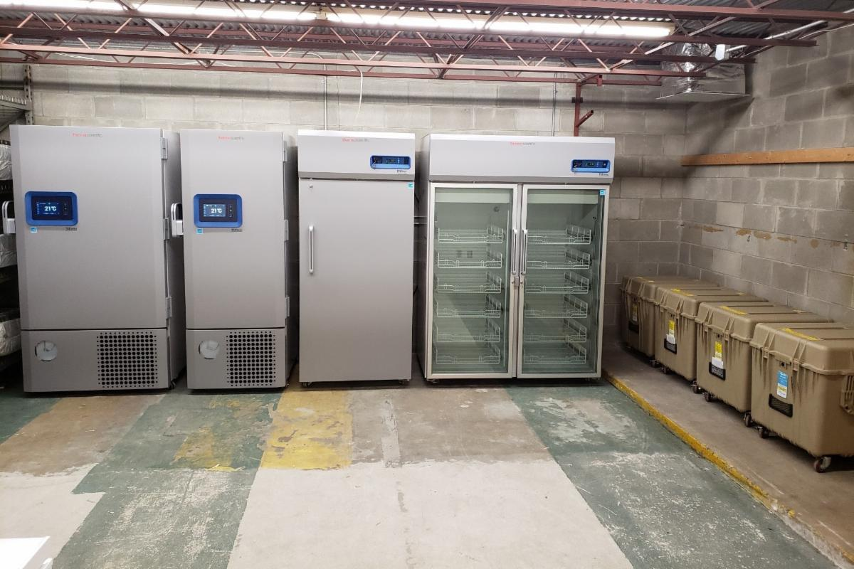 industrial size freezers in a warehouse