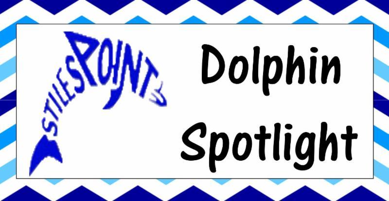 dolphin spotlight.JPG