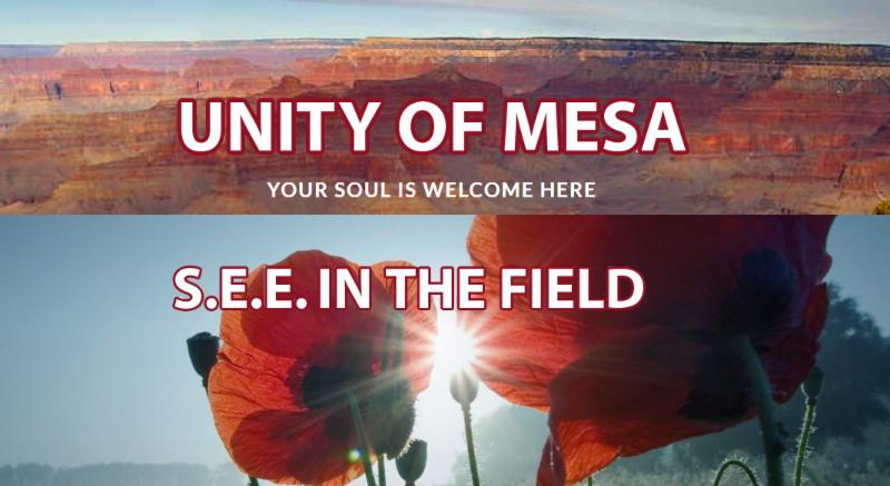 Unity of Mesa, SEE in the Field