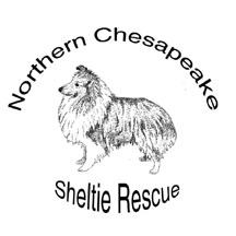 Happy Holidays from Northern Chesapeake Sheltie Rescue