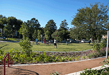 Mandell Park Walking Trail and Open Spaces