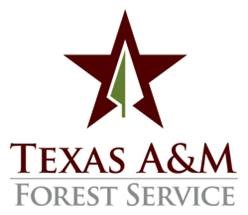 Texas A-M Forest Service Logo