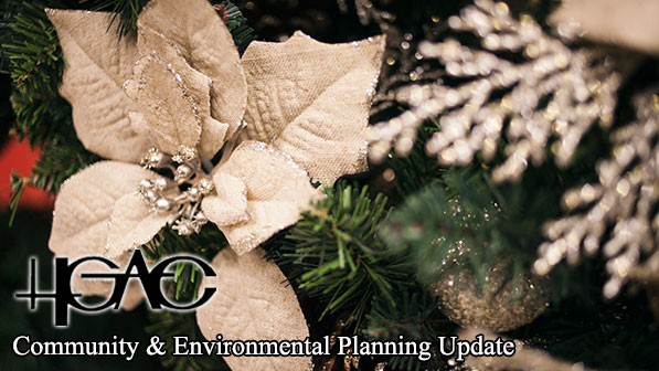 H-GAC Community and Environmental Planning Update with poinsettia in the background