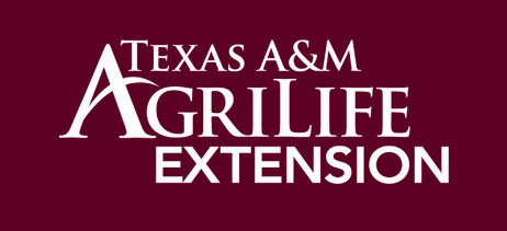 Texas AM AgriLife Extension on a maroon background