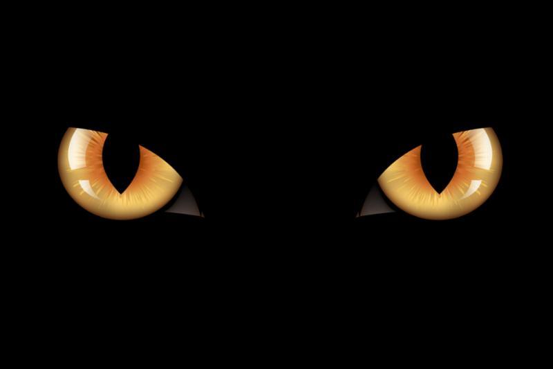 blackcat_eyes.jpg