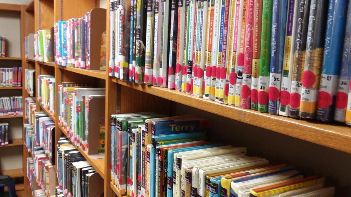 Smith Library Book Shelves
