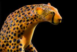 IZABEL LAM 3D PRINT - Zatiti The Cheetah