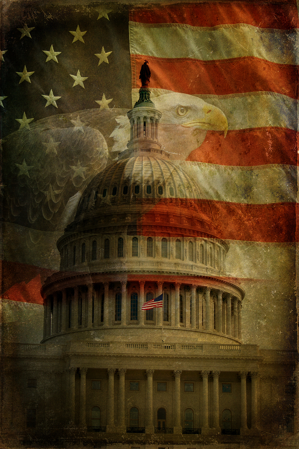 The United States Capitol American Flag and Bald Eagle with aged textured effect.