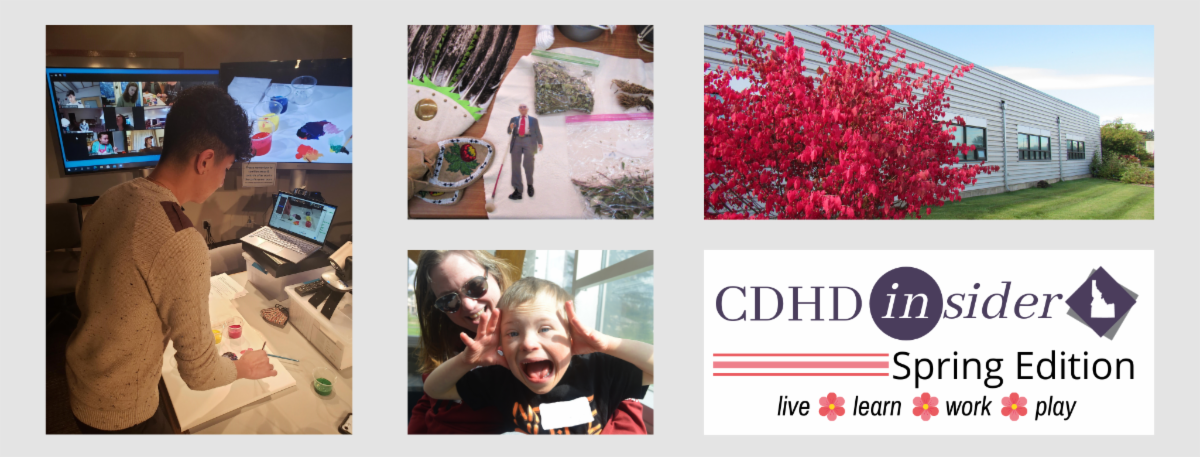 CDHD Insider Spring Edition. Various photos of CDHD activities.