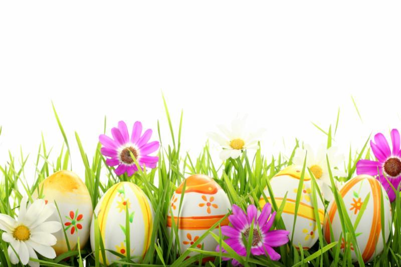 easter eggs flowers
