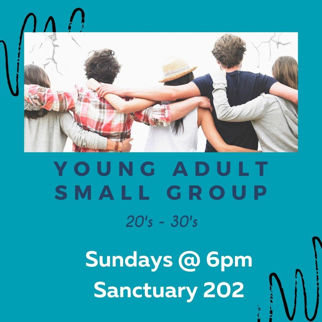 Young Adult Small Group _Fall 2021_.jpg