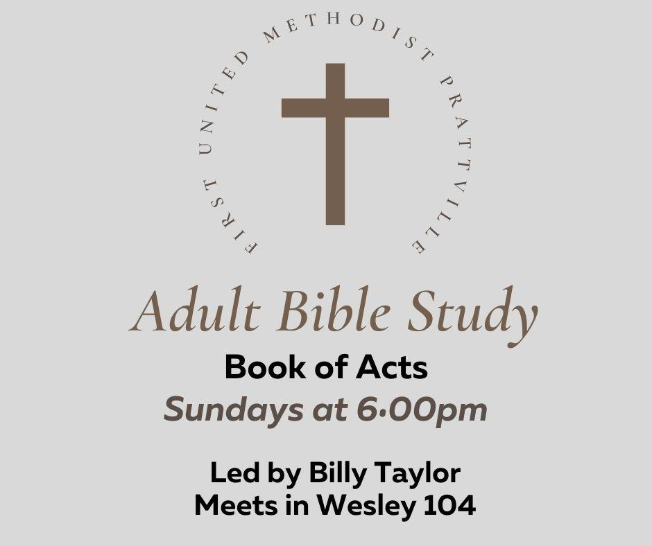 Acts Bible Study _Fall 2021_ .jpg