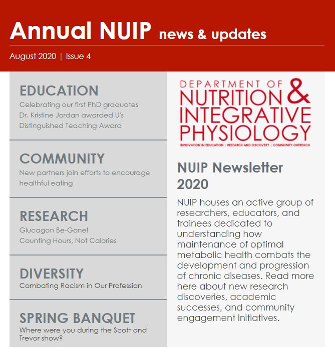 NUIP Newsletter capture_0.png