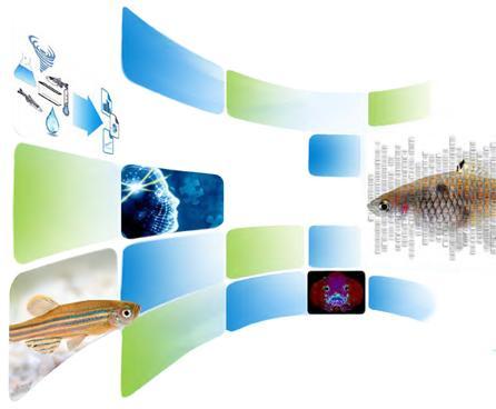 ORIP workshops on zebrafish husbandry standardization for research results