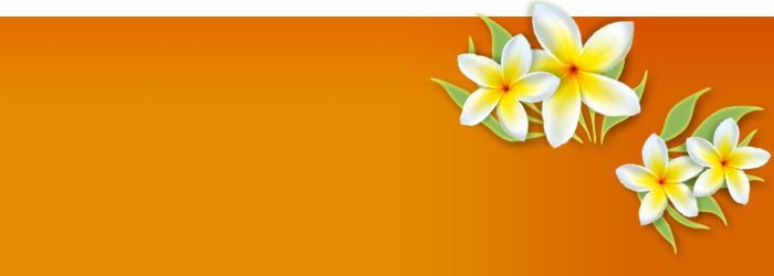 graphic-yellow-flowers-bnr.jpg