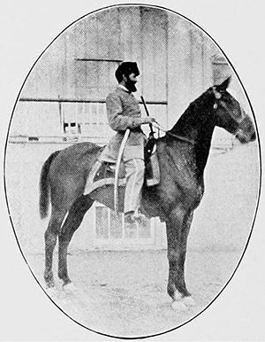 horse Prince Hal