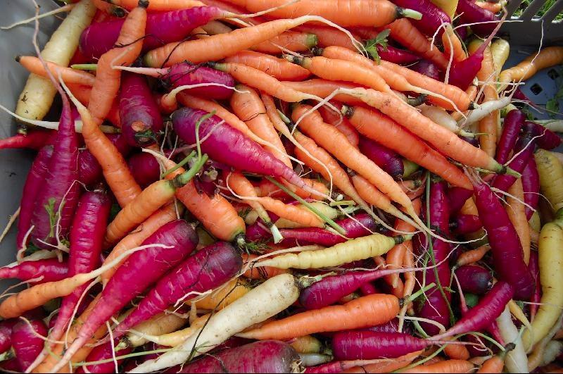 FarmersMarket.carrots