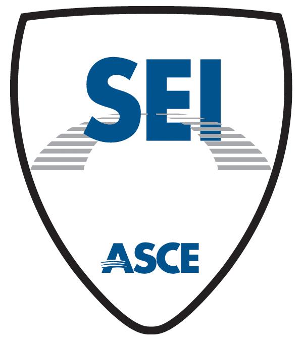 SEI Shield