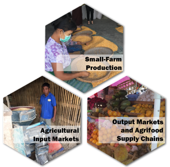 Small-farm production_ agricultural input markers_ and output markets _ agrifood supply chains