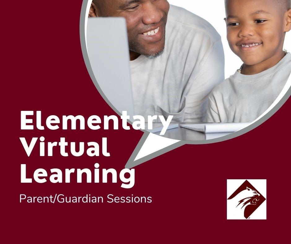 Elementary Virtual Learning
