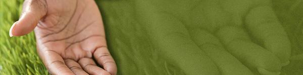 green_hand_hdr.jpg