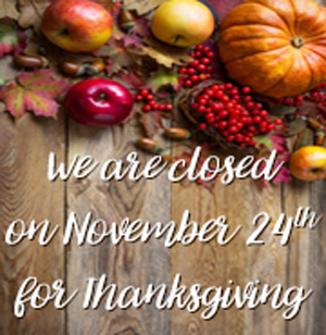 We are closed 11_24 for Thanksgiving_