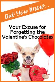 Forget Valentine Chocolates Excuse