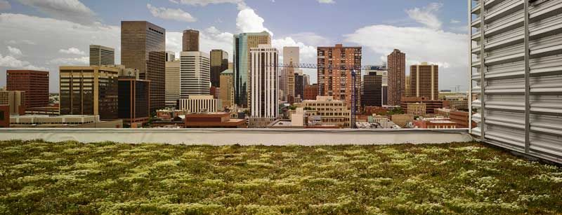 A green roof on the EPA's building in Denver. Image from the EPA.