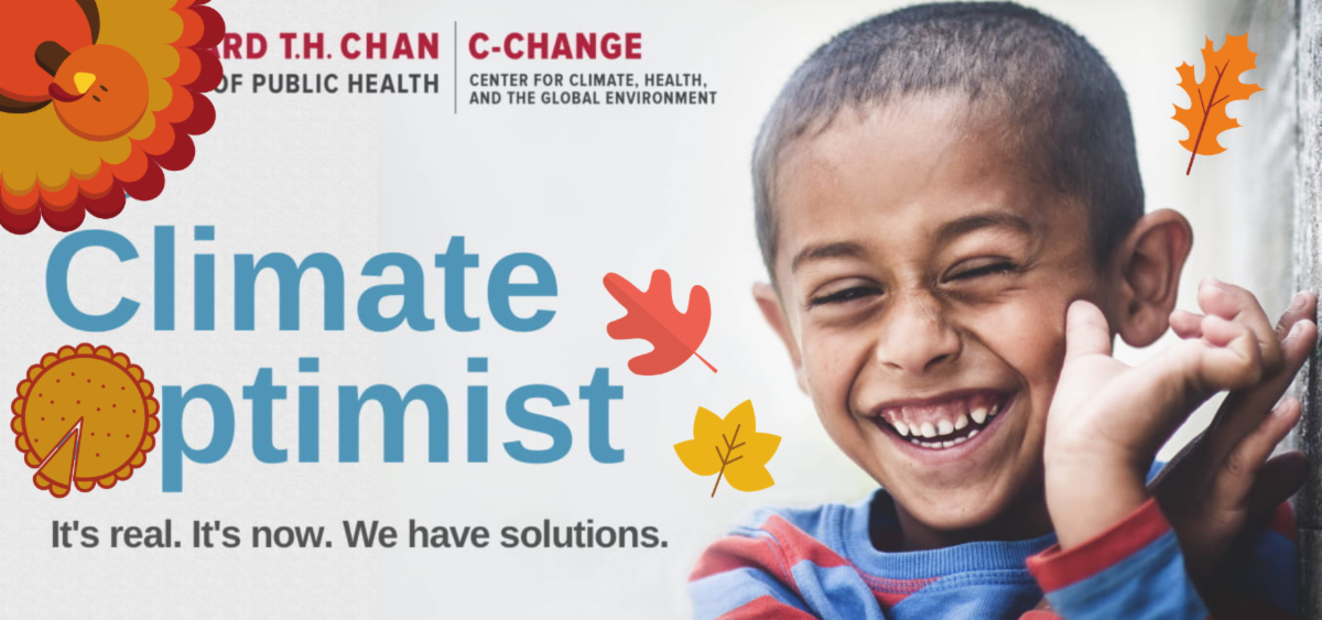 The Climate Optimist Banner