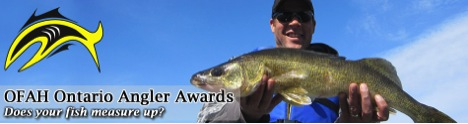 Fishing Angler Award