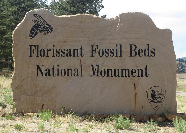 fossil beds
