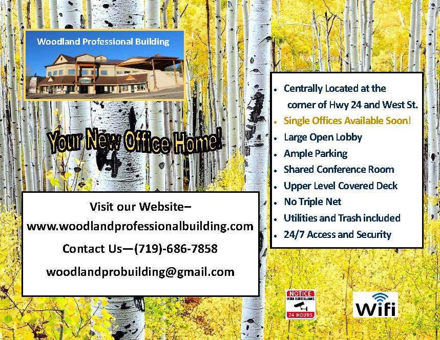 Woodland Professional Building