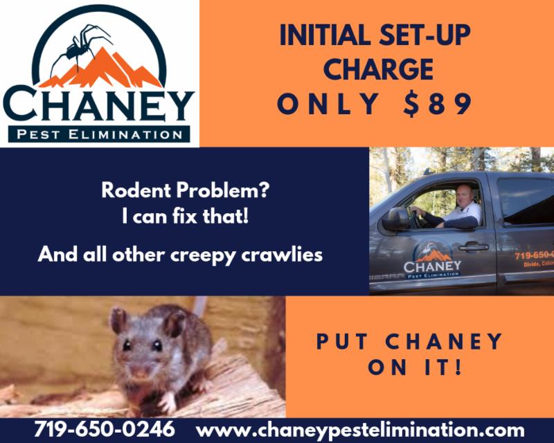 Chaney Pest Elimination